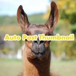 Auto Post Thumbnailのアイキャッチで読者の心もキャッチ!過去記事も一括で設定できる!