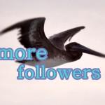 ツイッターで2001人以上フォロー出来ない人はフォロワーを増やす必要がある