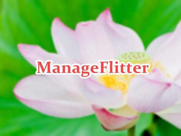 manageflitter04