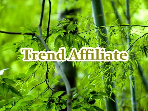 trend-affiliate03
