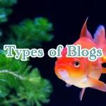 無料ブログと独自ドメインブログの違い – メリットとデメリットを考える