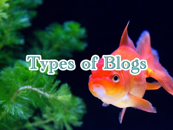 types-of-blogs01