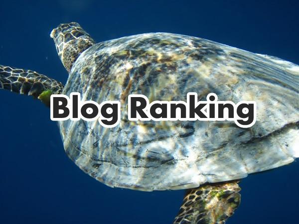 blog-ranking02