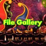 File Galleryの使い方|WordPressで複数画像をアップロード&一括挿入!