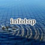 インフォトップ(infotop)に登録し、商品リンク作成をする手順