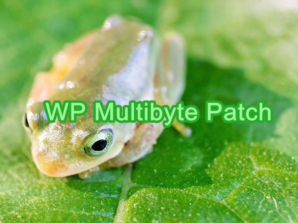 wp-multibyte-patch02