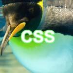 CSSの基礎知識まとめ|書き方や名称、セレクタの指定方法など
