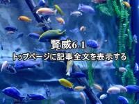 keni61-top-zenbun