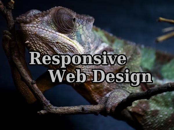 responsive-web-design031