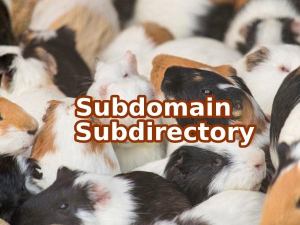 subdomain-subdirectory