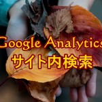 Googleアナリティクスでサイト内検索のデータ収集!クエリパラメータの設定は?
