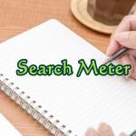 Search Meterの使い方|WordPressのサイト内検索を記録するプラグイン
