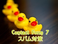 contact-form-7-spam