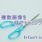 IrfanViewで複数画像を一括トリミング!同じ部分、同じサイズに