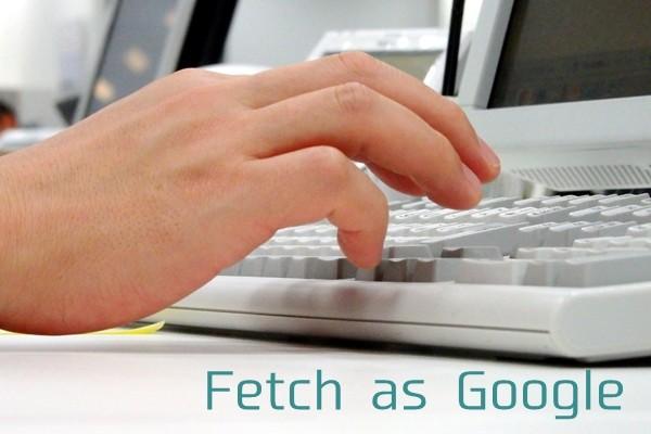 fetch-as-google